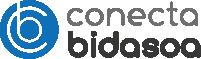 Conecta Bidasoa